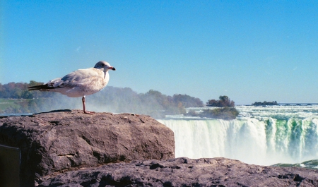 Niagara Falls Archivio Fotografico - 89694147