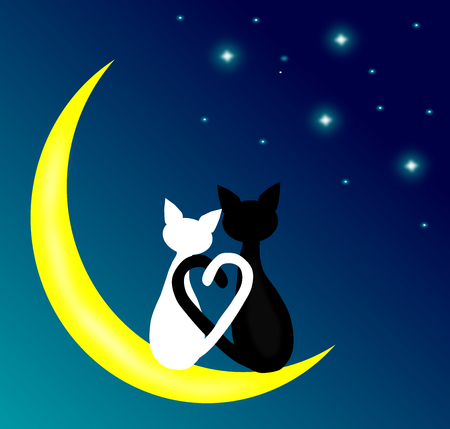 Two cats in love sitting on the crescent moon at night,lover couple,vector.