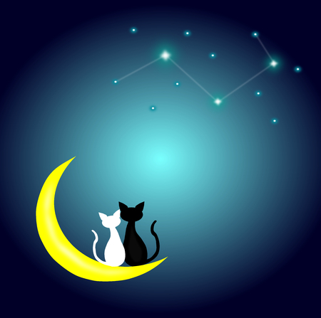 two cats in love sitting on the Crescent Moon and looking the constellation at night,lover couple,vector.
