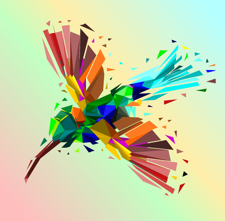 Isolated Low poly colorful Hummingbird with rainbow back ground,animal geometric,vector. Illustration