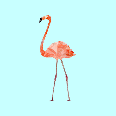 Low poly colorful Flamingo bird on blue back ground, animal geometric concept, vector illustration Illustration