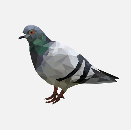 Low poly pigeon bird on gray back ground,animal geometric concept,Abstract vector
