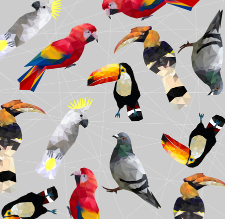 Pattern of Low poly colorful bird(pigeon,hornbills,parrot,toucan,cockatoo) on line back ground,animal geometric concept,Abstract vector.