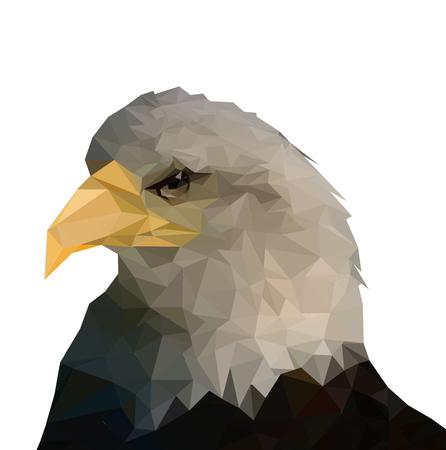 Geometric Low Polygon eagle Head Vector Template Иллюстрация