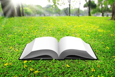 open book on Green Grass background in park beautiful  Stock Photo - 9868257