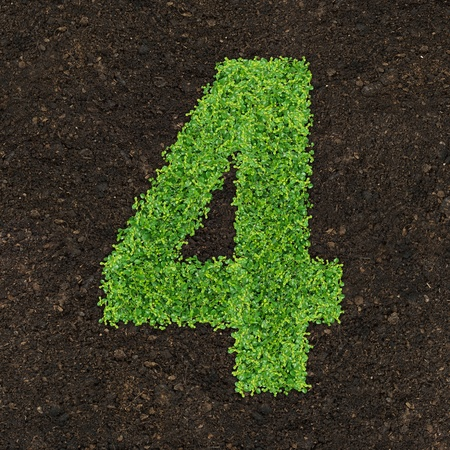 manure: Number green of the grass on soil manure Stock Photo
