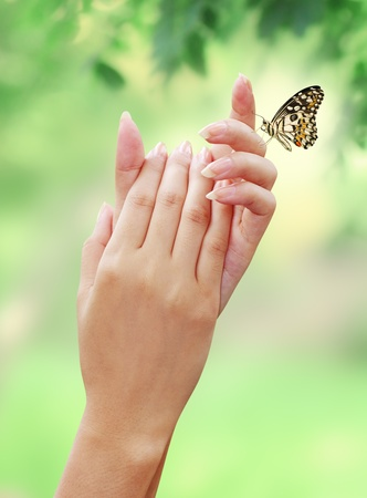 Woman hand with The natural beauty of the butterfly Stock Photo