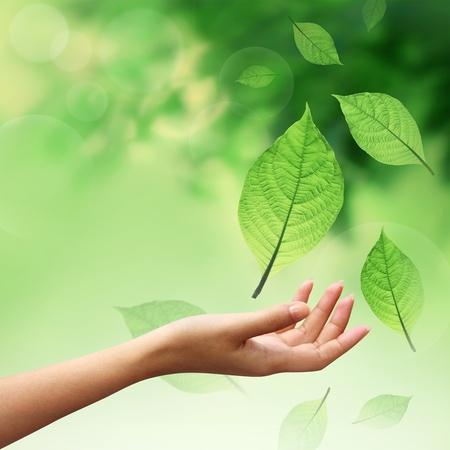 Hand met aard element bladeren  Stockfoto
