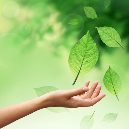 Hand with nature element leafs Stock Photo - 10989316
