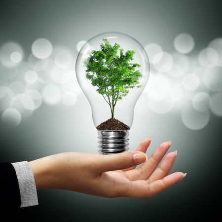 save electricity: Bulb light with tree inside on woman hand on gray bokeh background Stock Photo
