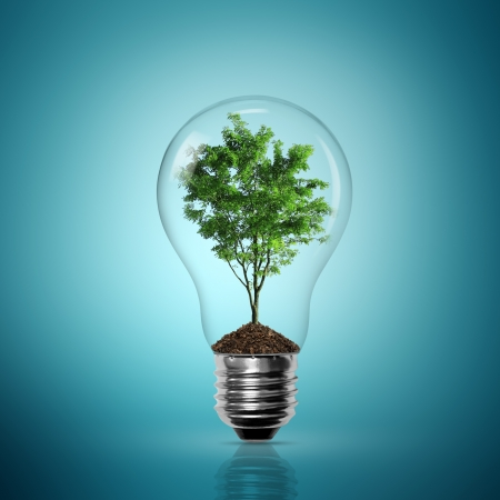 environmental issues: Bulb light with tree inside on blue background