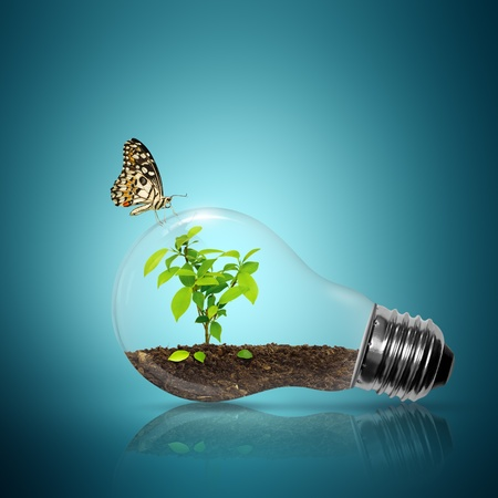 environmental issues: Bulb light with tree inside have butterfly on blue background  Stock Photo