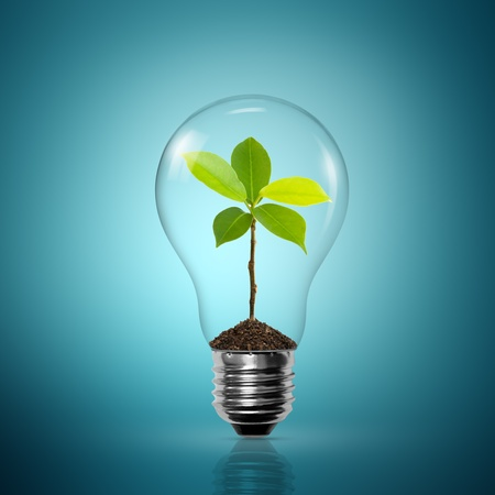 overuse: Light Bulb with sprout inside on blue background