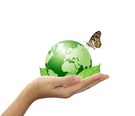 mundo manos: Mundo verde y hoja han mariposa en mano de la mujer Foto de archivo