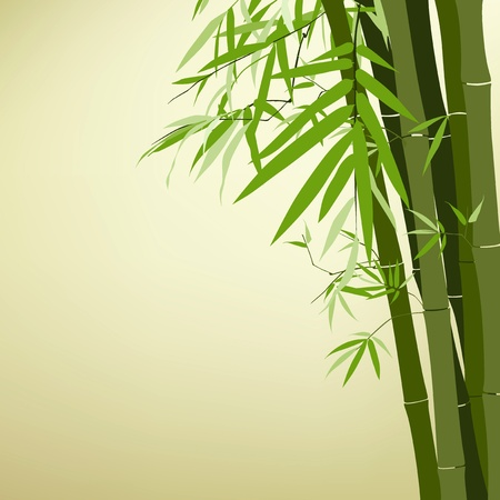bamboo leaves: Bamboo chinese drawing printing, vector illustration