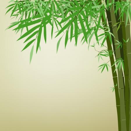 Illustration vectorielle en bambou