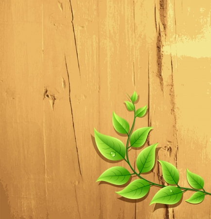 tack: fresh green leaf on wood wallpaper background, vector