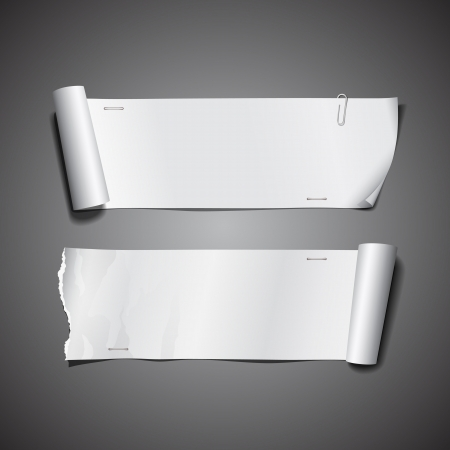 White paper roll ripped  Long collections design for business