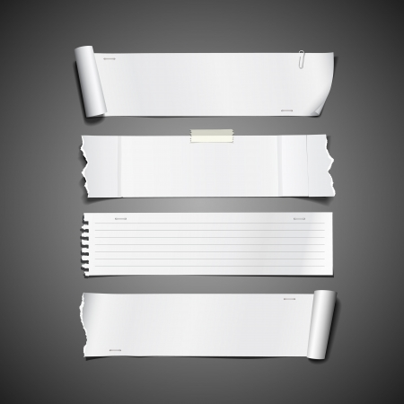 cartone strappato: Rotolo di carta bianco strappato lunghi di disegno collezioni Vettoriali