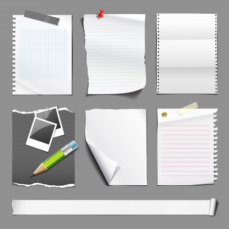 White paper collections design Vector