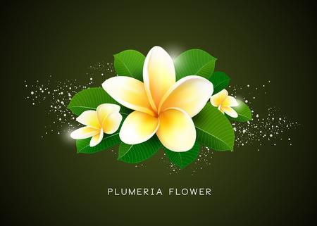 Vector Plumeria flower and leaf design, illustration Ilustração