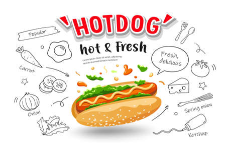 Hot dog vector, hot and fresh, with food drawing poster banner design isolated on white background, illustration