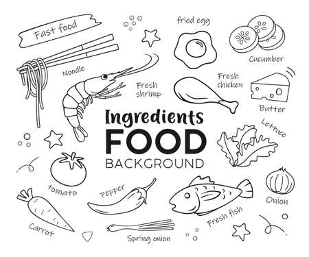 Drawing food Ingredients, isolated on white background vector, illustration