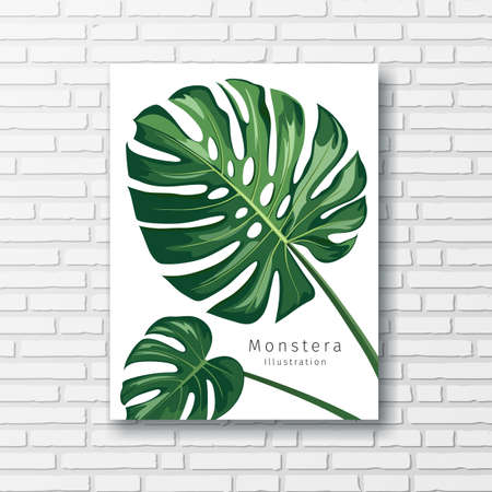Monstera leave print white frame, on block wall background, Eps 10 illustration Ilustração