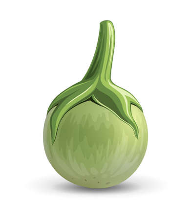 Eggplant vector realistic design, isolated on white background, Eps 10 illustration
