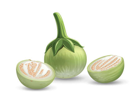 Eggplant vector, and eggplant cut half realistic design, isolated on white background, Eps 10 vector