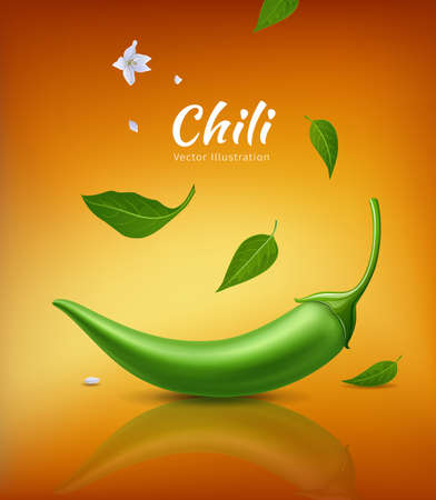 Chili peppers green fresh and leaves, flower chili realistic design, on yellow orange background, Eps 10 vector illustration