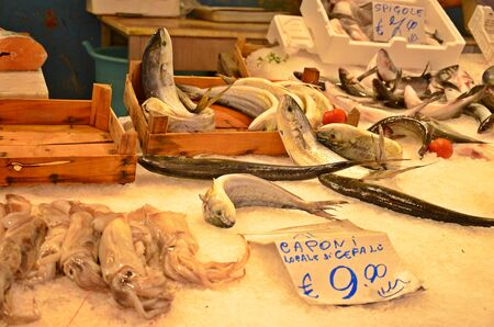 biggest: fishes for sale in the biggest street market Ballaro in Palermo in Sicily, Italy Stock Photo