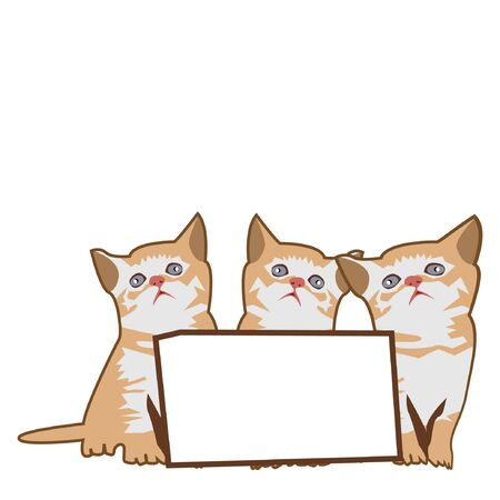 Three kittens with paper board. Vector illustration on white background
