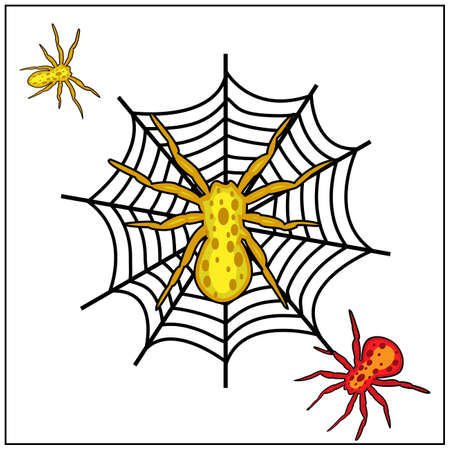 Spider insect icons set, Vector Illustration. Spider and cobweb.