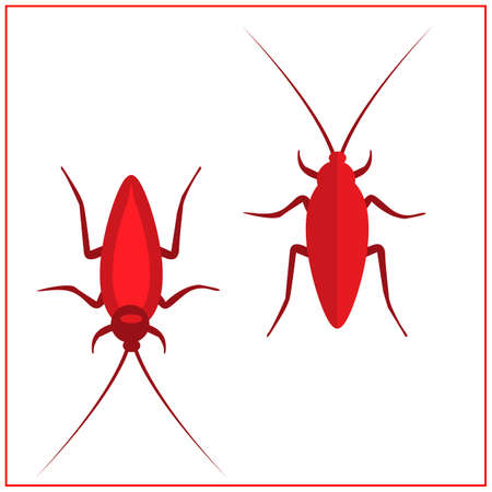 Cockroach insect icons set, Vector Illustration. Red Cockroach. 矢量图像