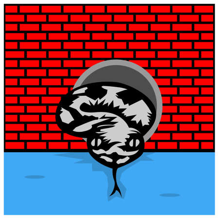 Python comes out of the water pipe. Vector Illustration on Brick wall background.