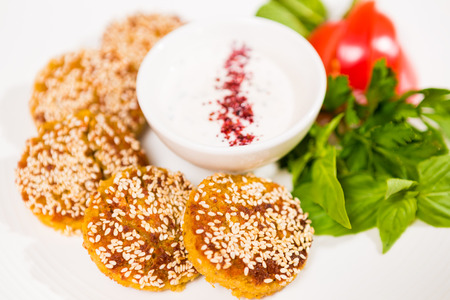 Middle East cuisine. a plate of delicious falafels and hummus. Vegetarian fare. photo