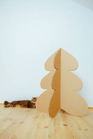 Christmas Tree Made Of Cardboard. Unique Trees. New Year photo