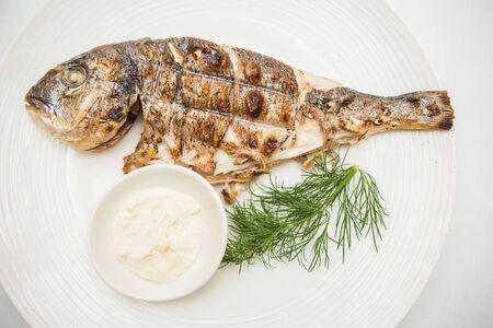 dorada: Grilled organic dorada fish white dish. Top view