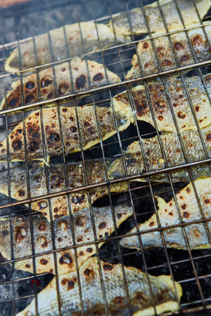 copy paste: Grilling fish on campfire with copy paste