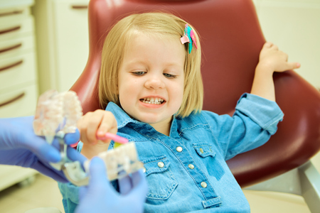 dentist: Little girl sitting in the dentists office learning to clean teeth