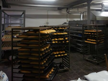 Baking tray with tasty bread, indoors. Pallets with freshly baked bread. Industrial production of bread in the bakery