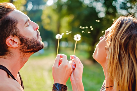 Couple in nature blowing dandelion on a summer day Stockfoto