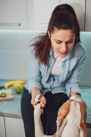 Woman playing with her dog and holding his paws while sitting on kitchen countertop Stock Photo