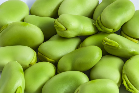 fava: Broad bean green seeds lat. Visia faba. Fava bean field bean bell bean tic bean Stock Photo