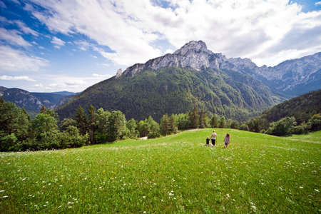 Family in distance at green field in Slovenian Alps photo