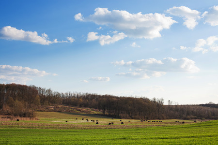 Croatian countryside scenery Stock Photo