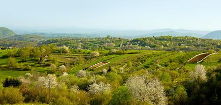Landscape of village in slovenia