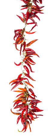 String with dry hot peppers Stock Photo - 55145223