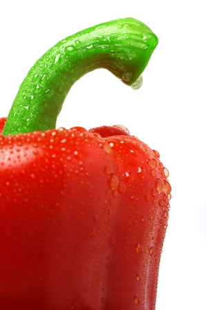 Red pepper paprika, isolated, close-up, shallow depth of field
